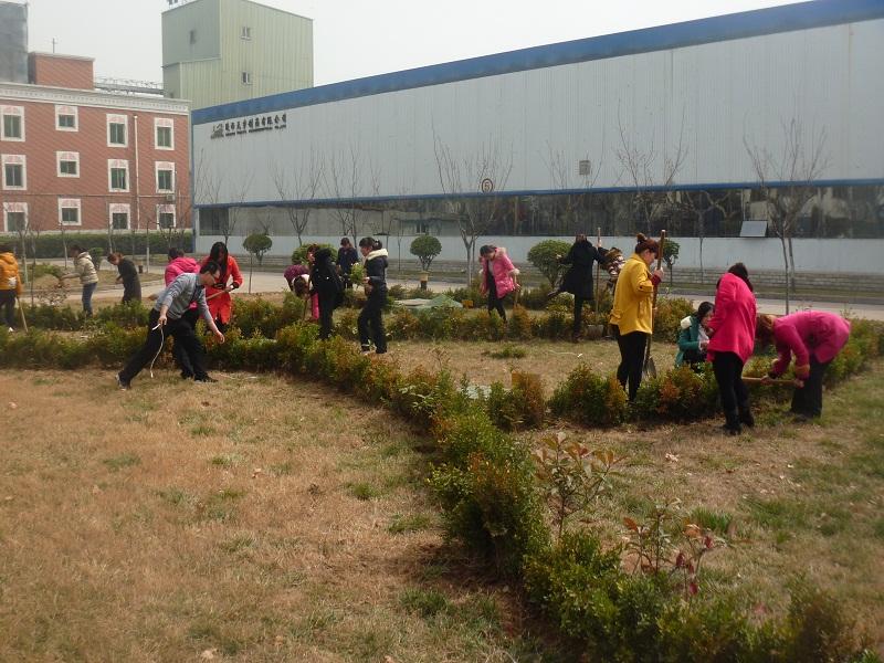 物料保障部部长殷维带着可爱的儿子一直坚持到植树最后.